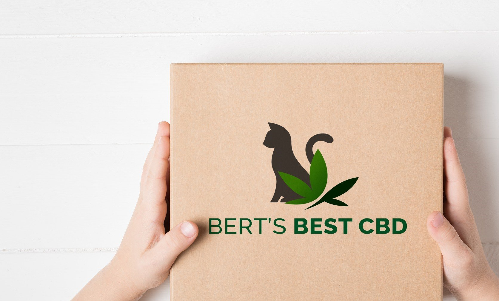berts-logo-3